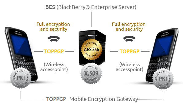 TOPPGP_BES_images